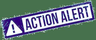 Action Alert Image